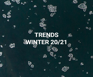 Trends Winter 20/21